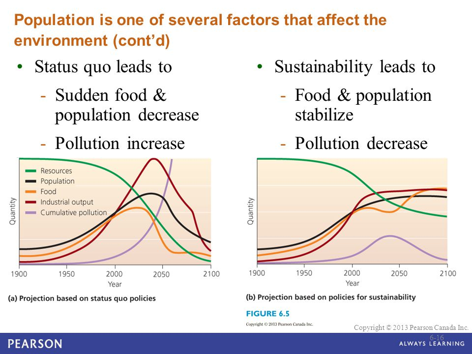 Sudden food & population decrease Pollution increase