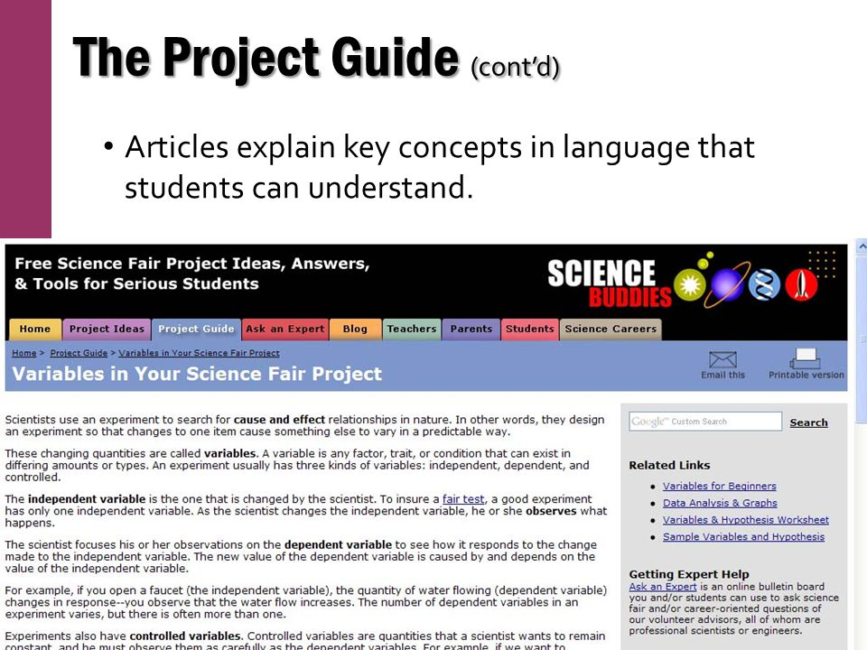 The Project Guide (cont'd)