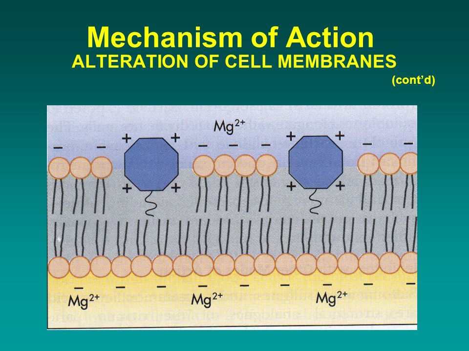 Mechanism of Action ALTERATION OF CELL MEMBRANES