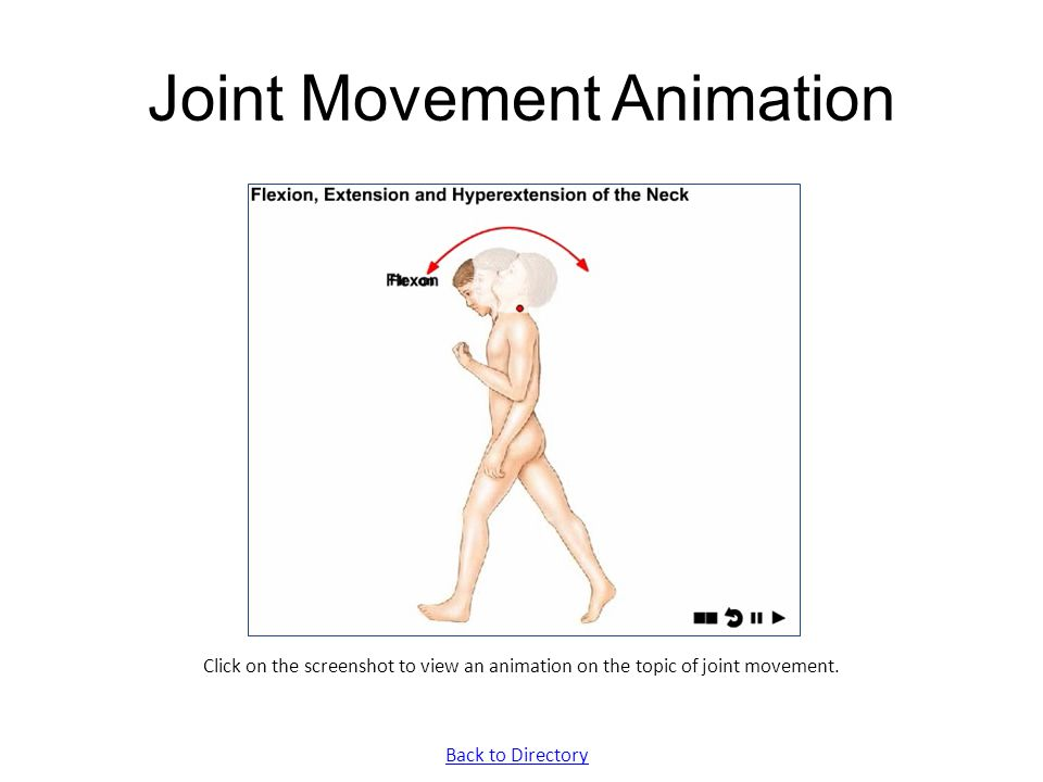 Joint Movement Animation
