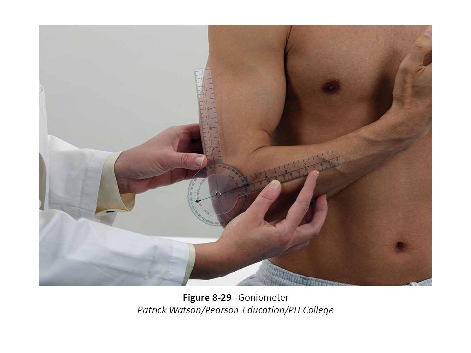 Patrick Watson/Pearson Education/PH College