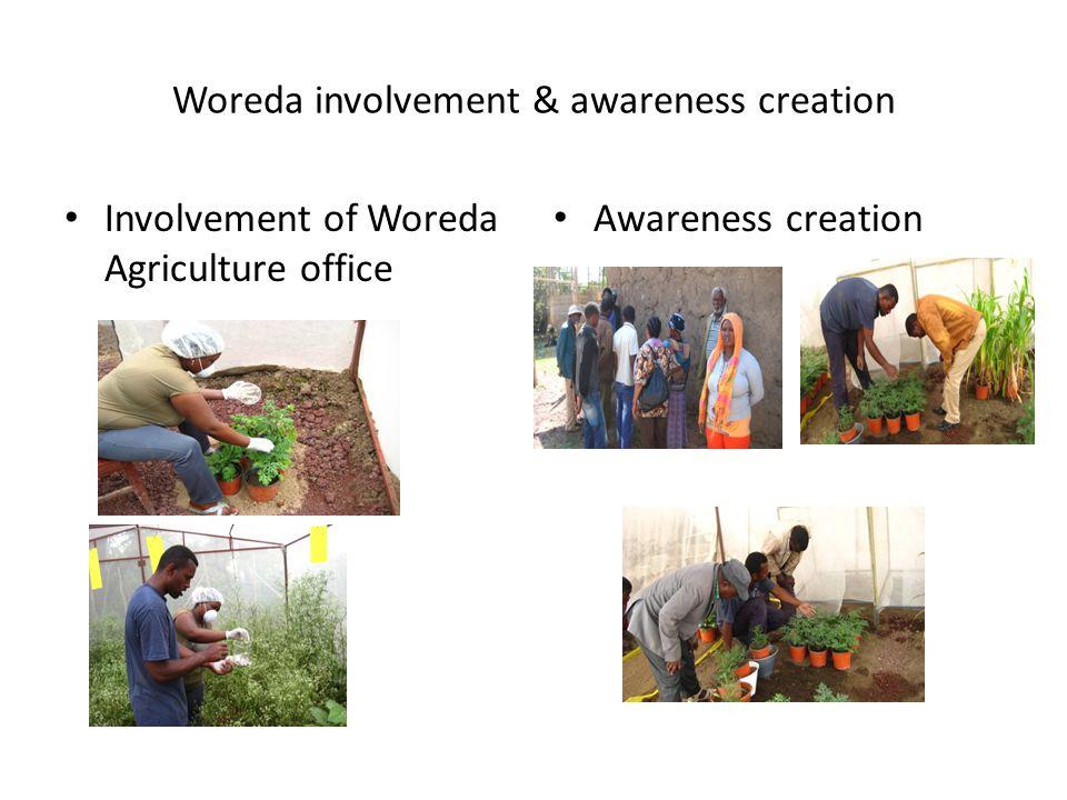 Woreda involvement & awareness creation
