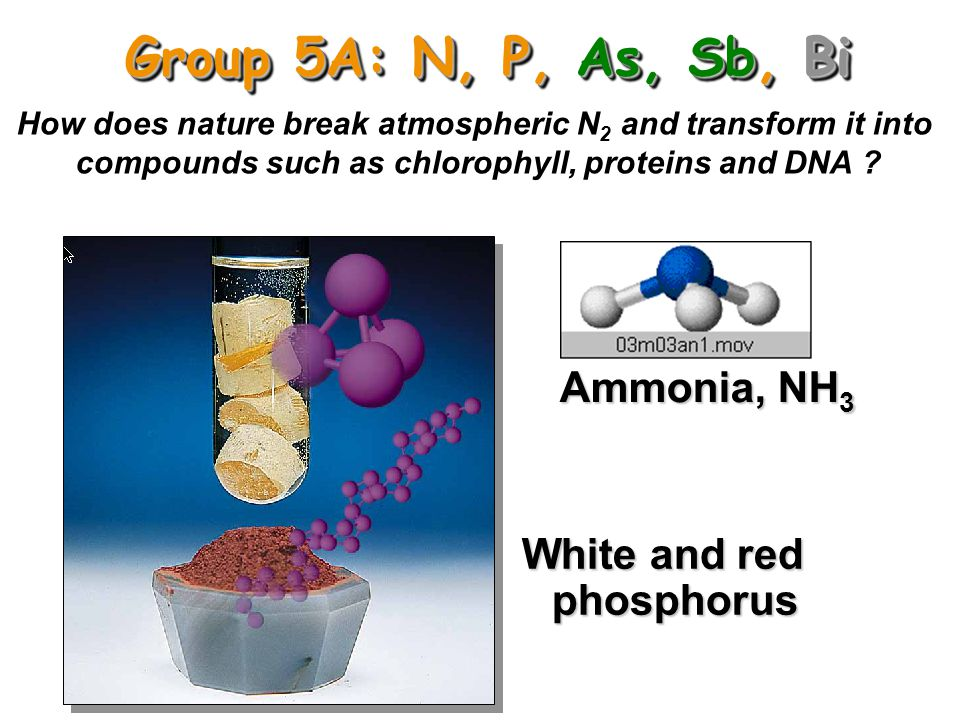 Group 5A: N, P, As, Sb, Bi Ammonia, NH3 White and red phosphorus