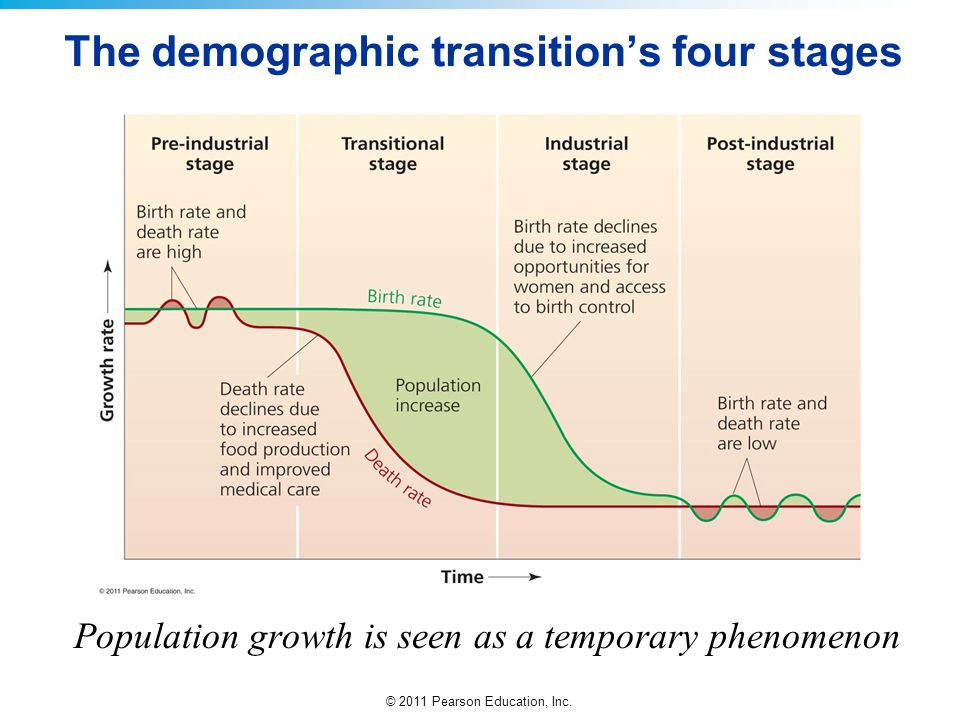 The demographic transition's four stages