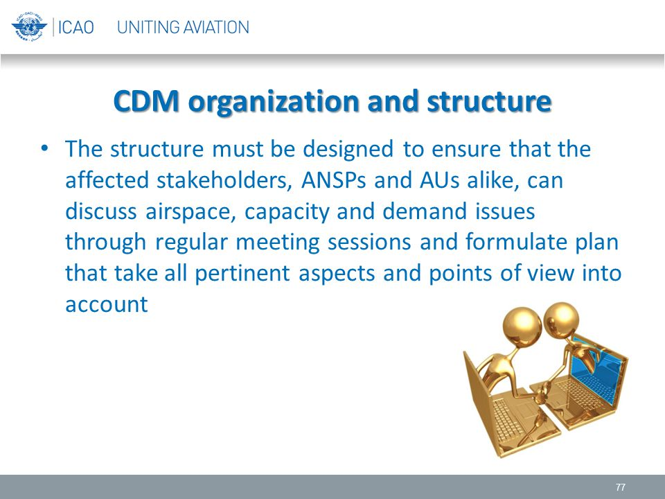 CDM organization and structure
