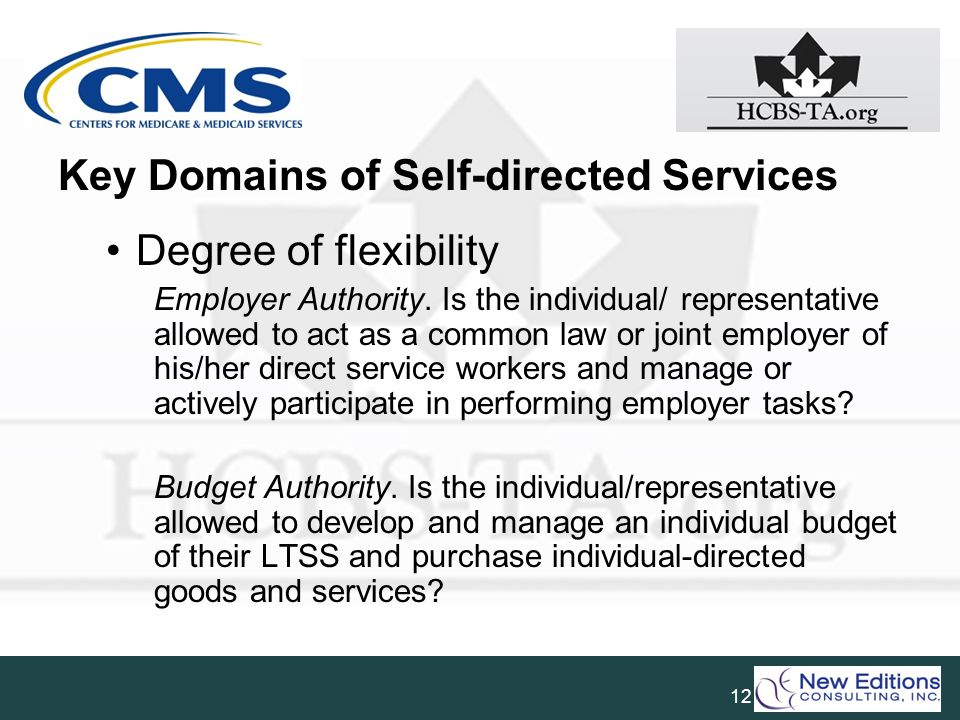 Key Domains of Self-directed Services