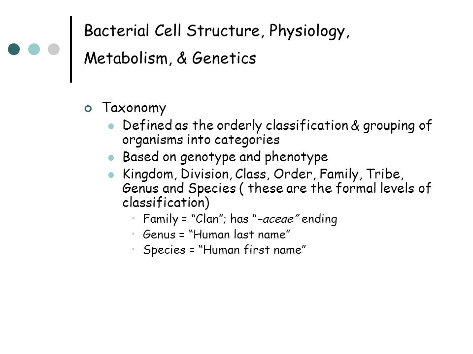 Bacterial Cell Structure, Physiology, Metabolism, & Genetics