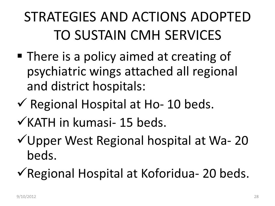 STRATEGIES AND ACTIONS ADOPTED TO SUSTAIN CMH SERVICES