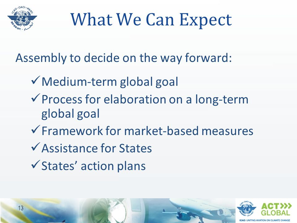 What We Can Expect Assembly to decide on the way forward: