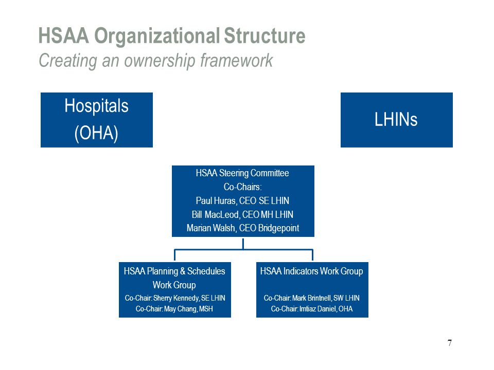 HSAA Organizational Structure Creating an ownership framework