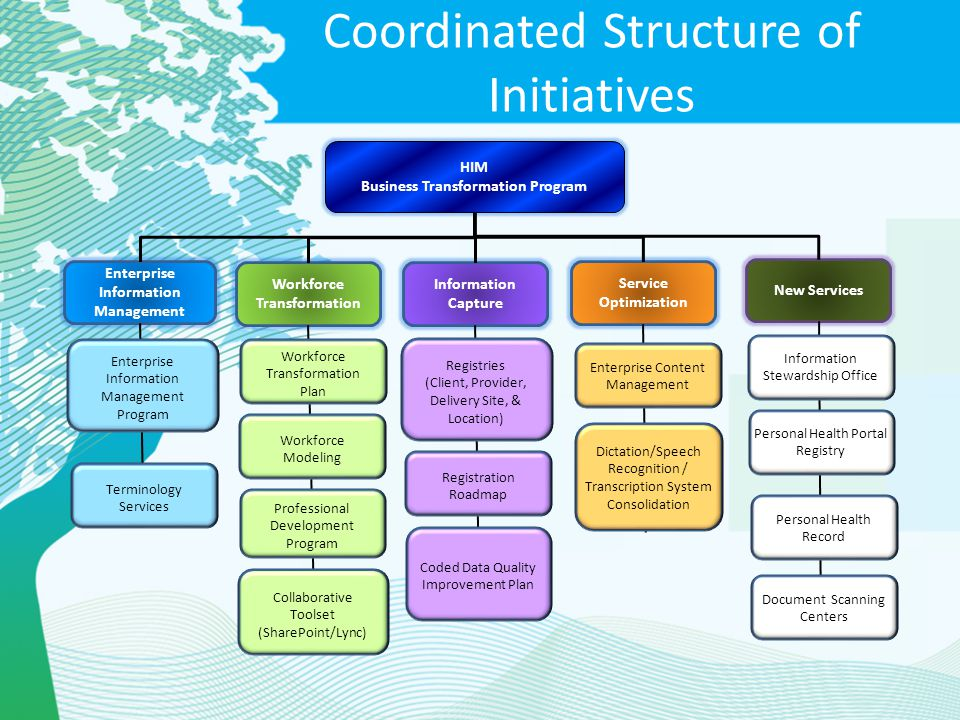 Coordinated Structure of Initiatives
