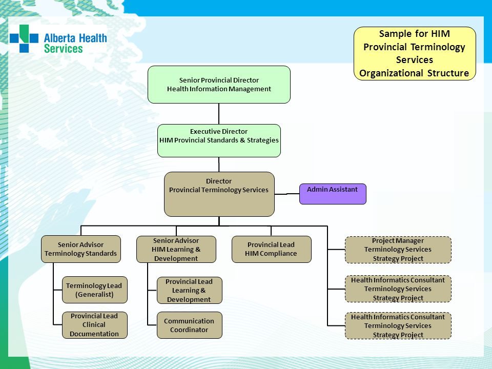 Provincial Terminology Services Organizational Structure