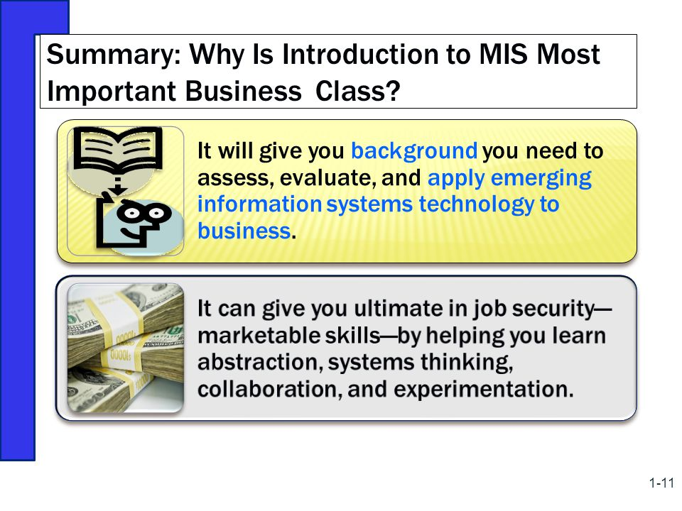 Summary: Why Is Introduction to MIS Most Important Business Class
