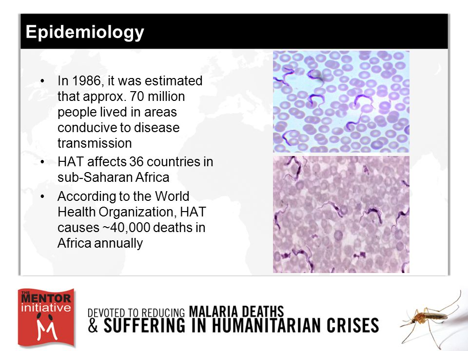 Epidemiology In 1986, it was estimated that approx. 70 million people lived in areas conducive to disease transmission.