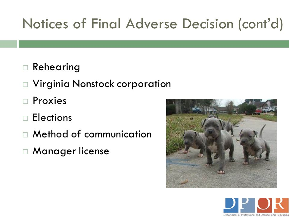 Notices of Final Adverse Decision (cont'd)