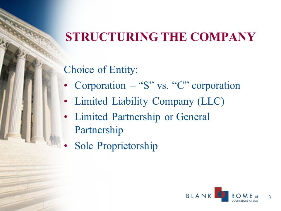 STRUCTURING THE COMPANY