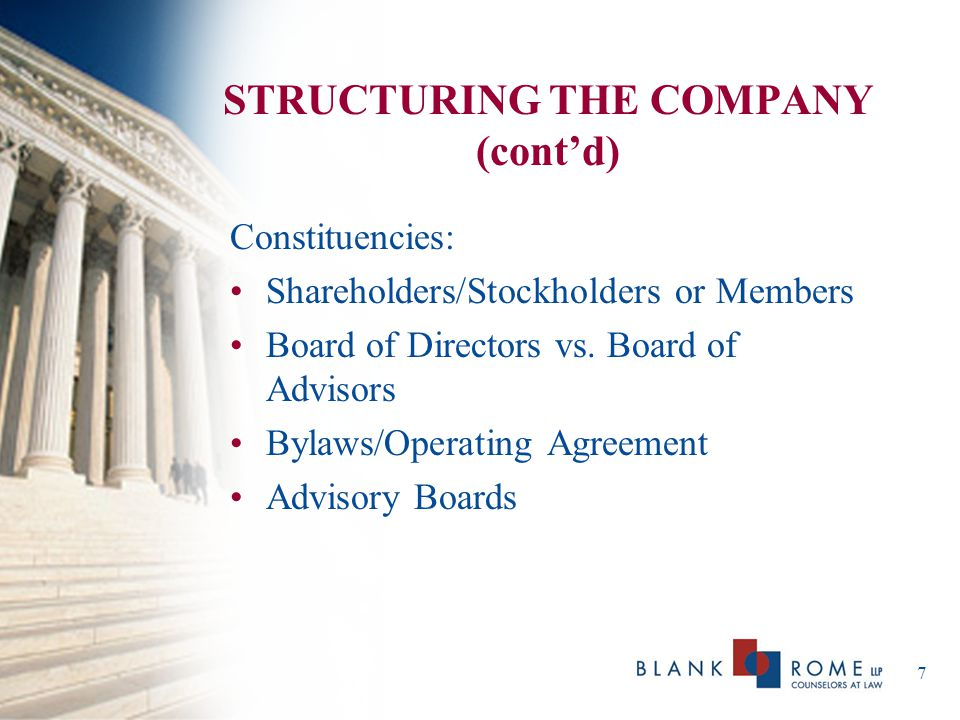 STRUCTURING THE COMPANY (cont'd)