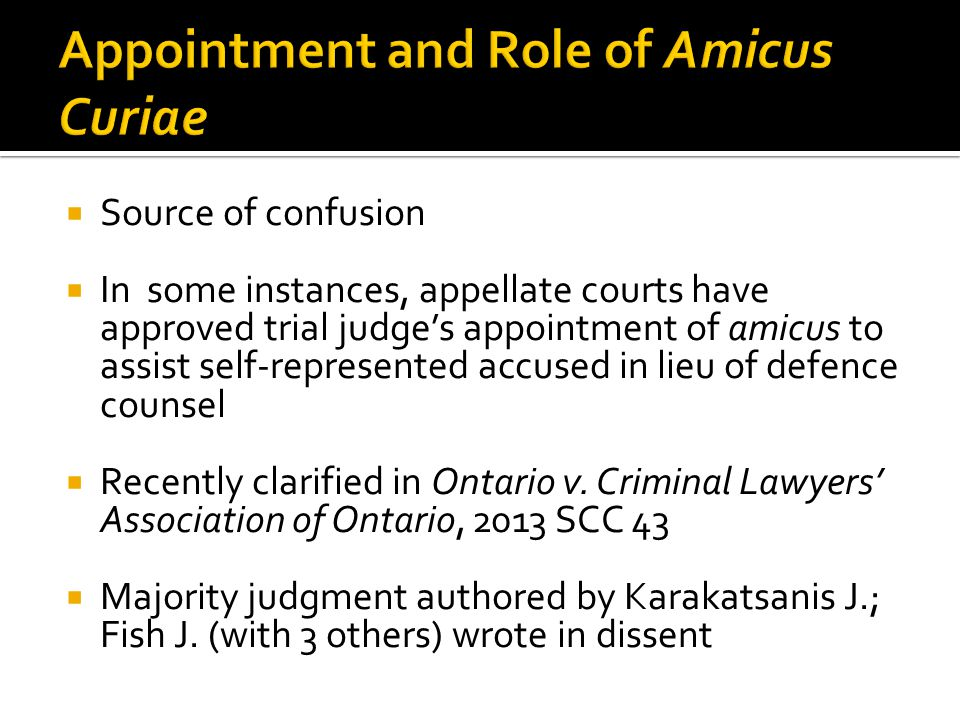 Appointment and Role of Amicus Curiae