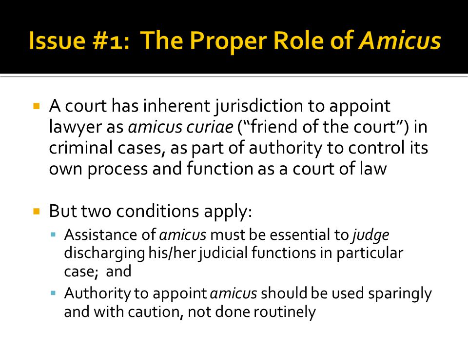 Issue #1: The Proper Role of Amicus
