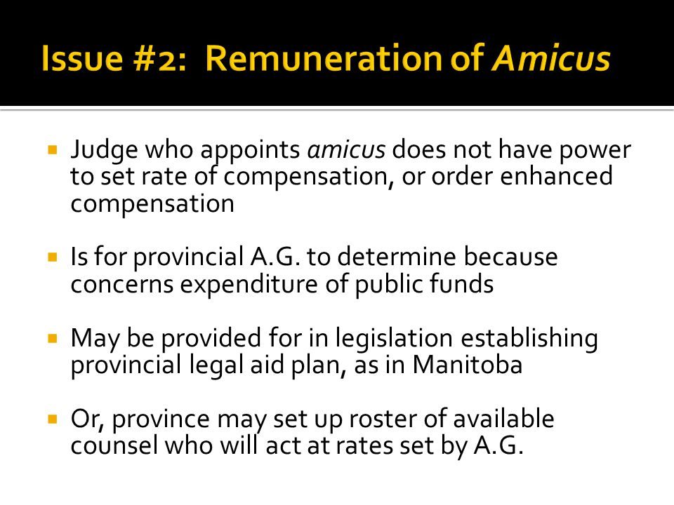 Issue #2: Remuneration of Amicus