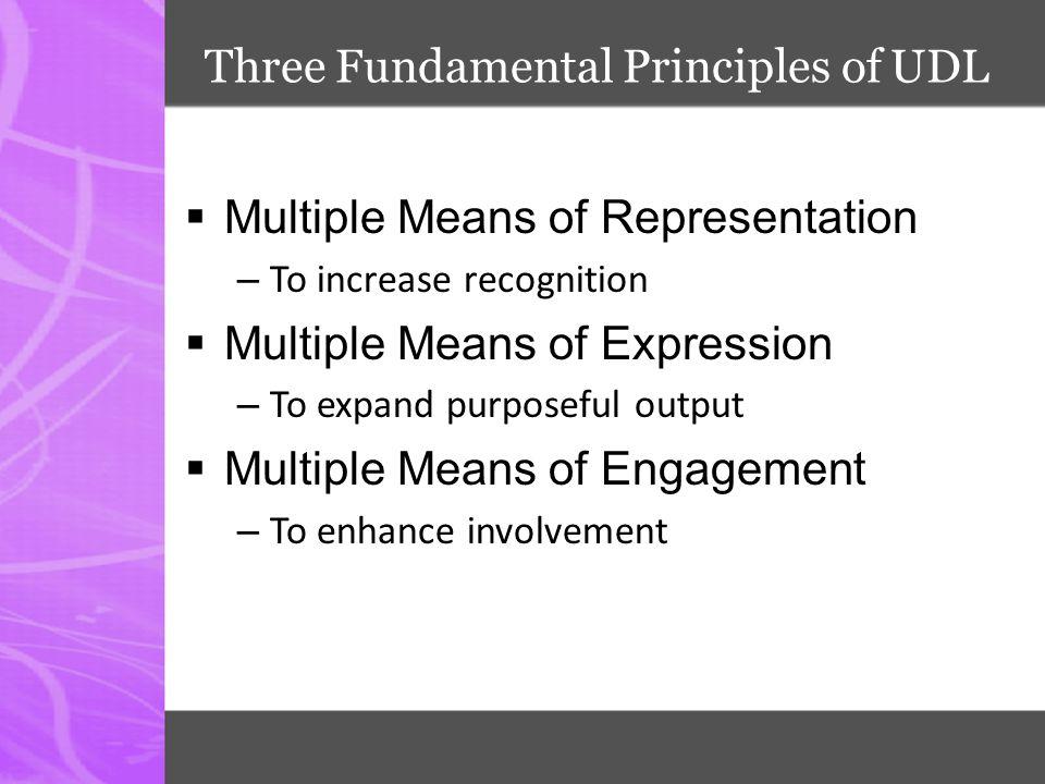 Three Fundamental Principles of UDL