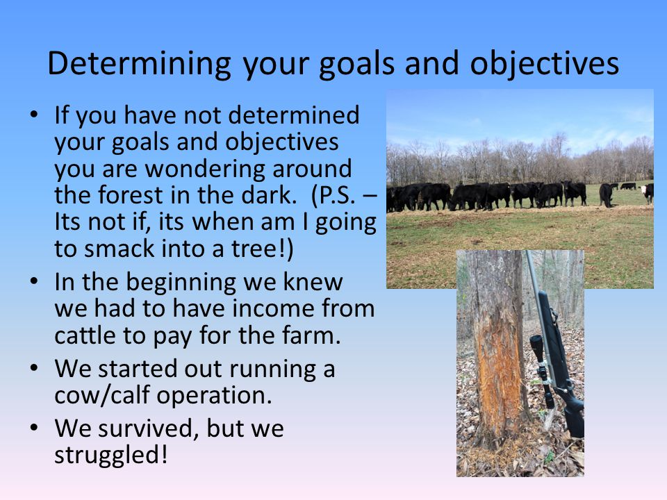 Determining your goals and objectives