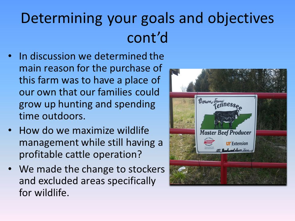 Determining your goals and objectives cont'd