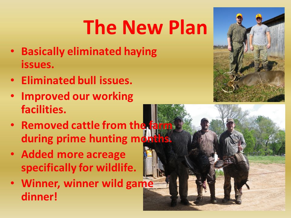 The New Plan Basically eliminated haying issues.