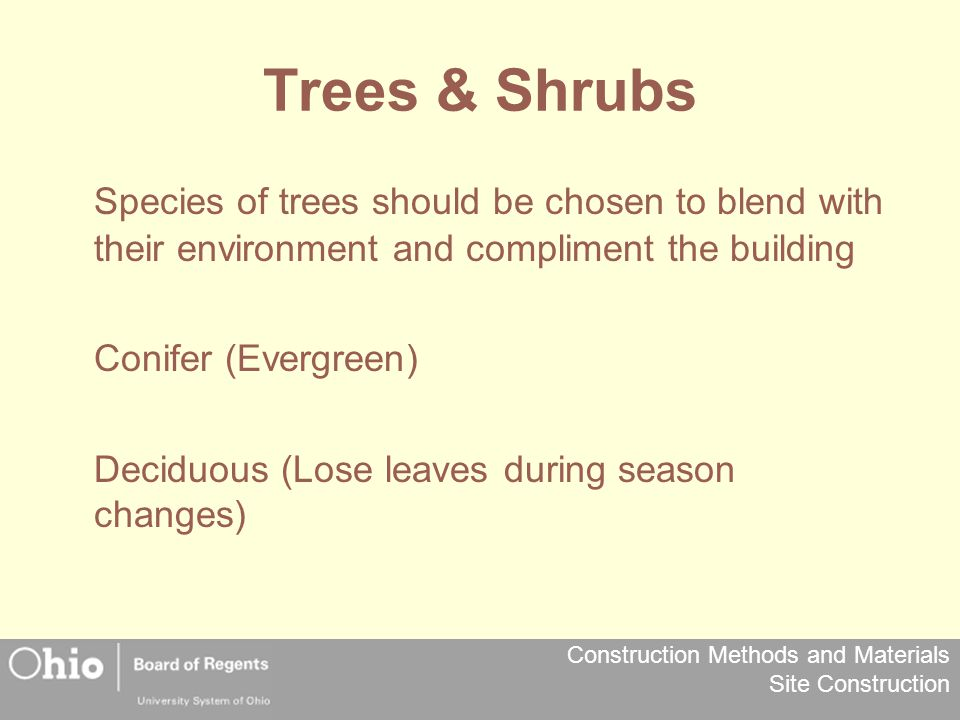 Trees & Shrubs Species of trees should be chosen to blend with their environment and compliment the building.