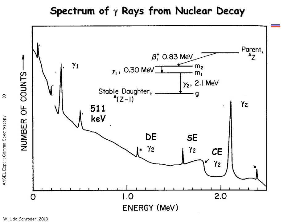 Spectrum of g Rays from Nuclear Decay