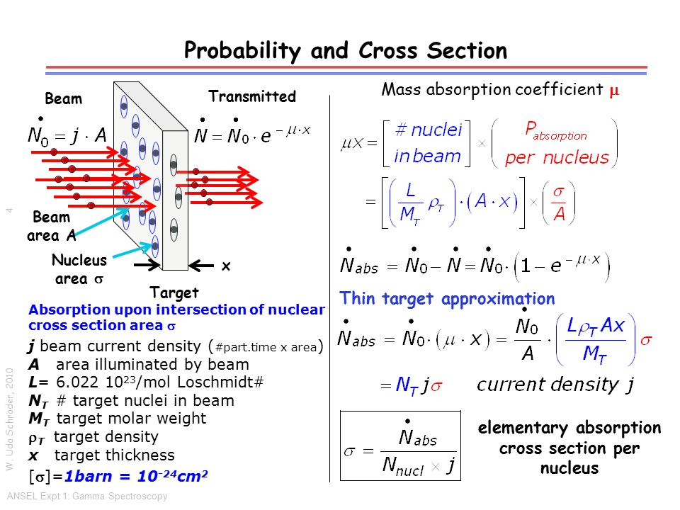 Probability and Cross Section