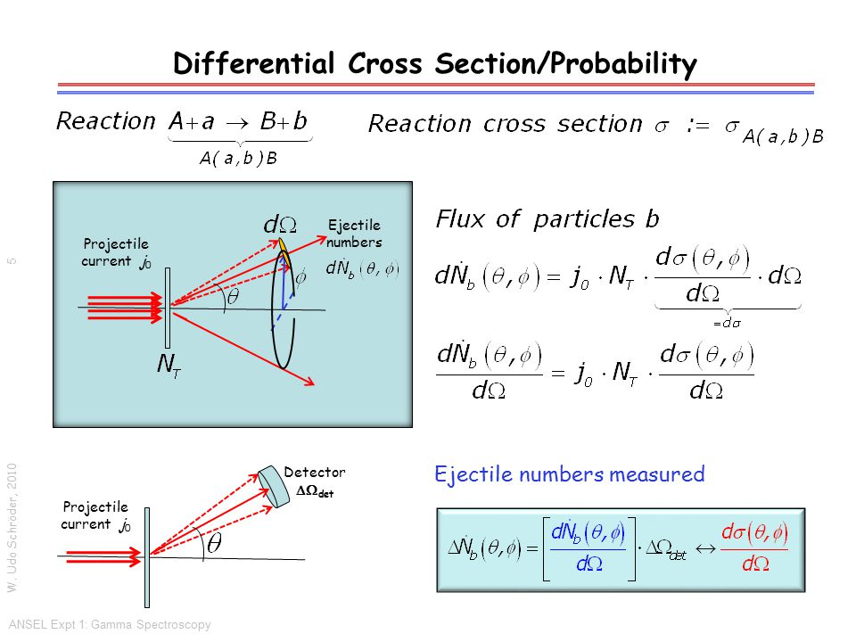 Differential Cross Section/Probability