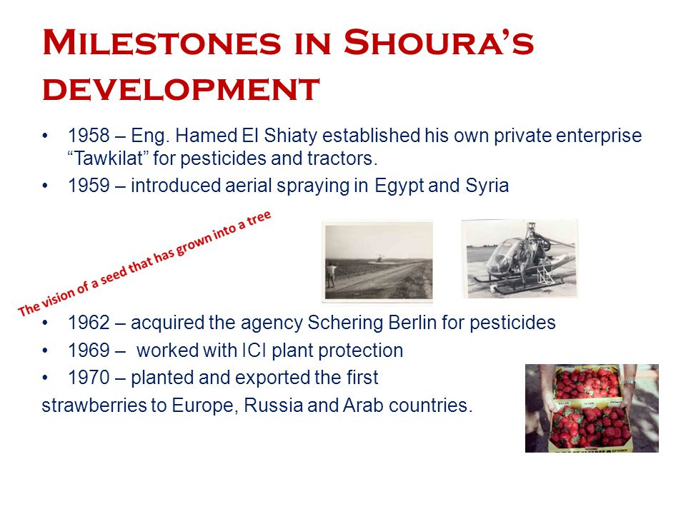 Milestones in Shoura's development