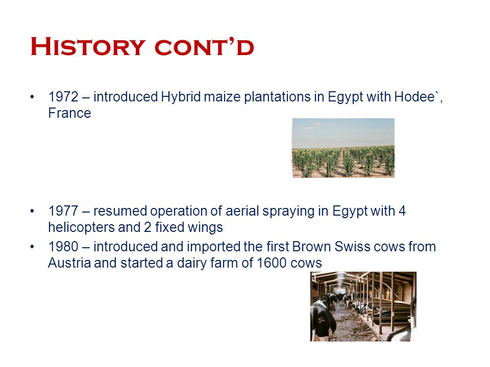 History cont'd 1972 – introduced Hybrid maize plantations in Egypt with Hodee`, France.