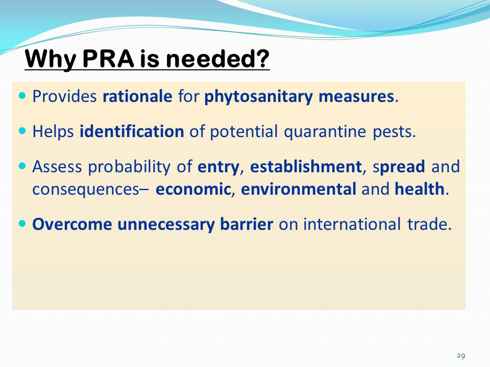 Why PRA is needed Provides rationale for phytosanitary measures.