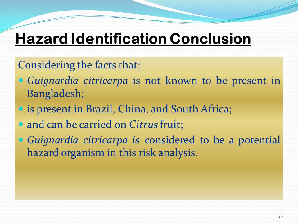 Hazard Identification Conclusion