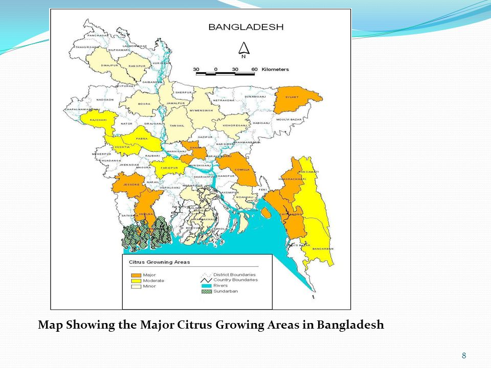Map Showing the Major Citrus Growing Areas in Bangladesh