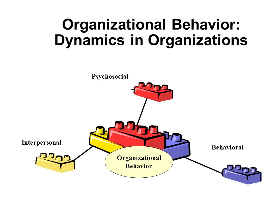 Organizational Behavior: Dynamics in Organizations