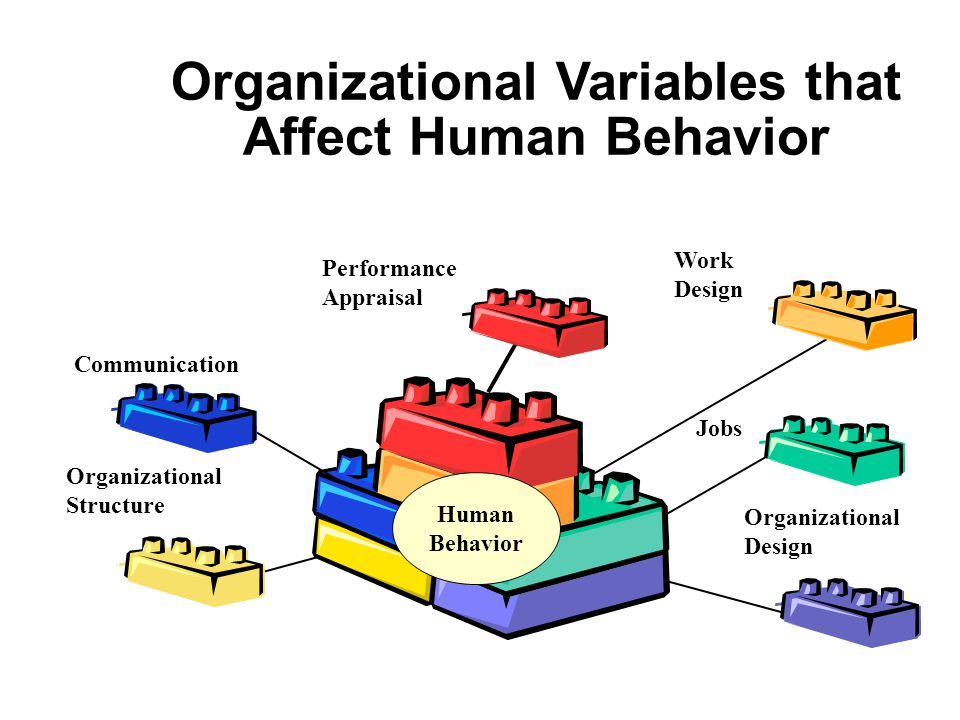 Organizational Variables that