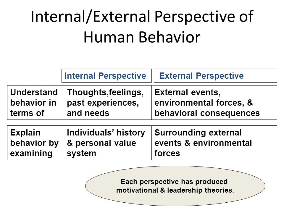 Internal/External Perspective of Human Behavior