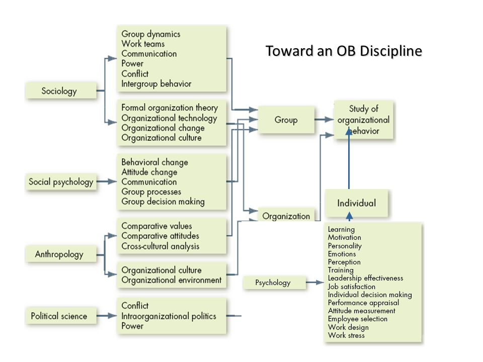 Toward an OB Discipline