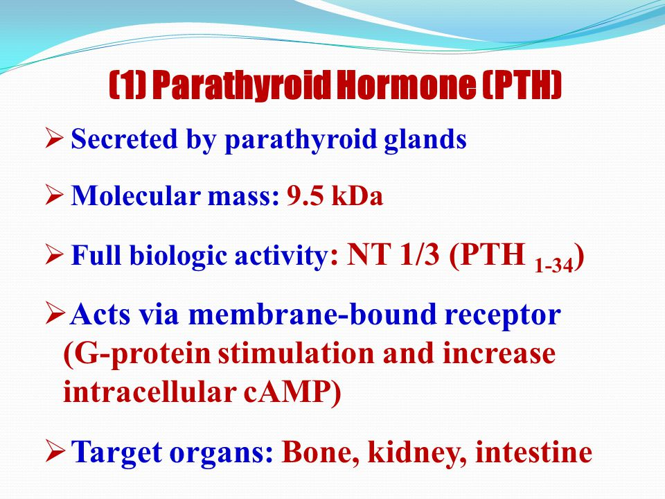 (1) Parathyroid Hormone (PTH)