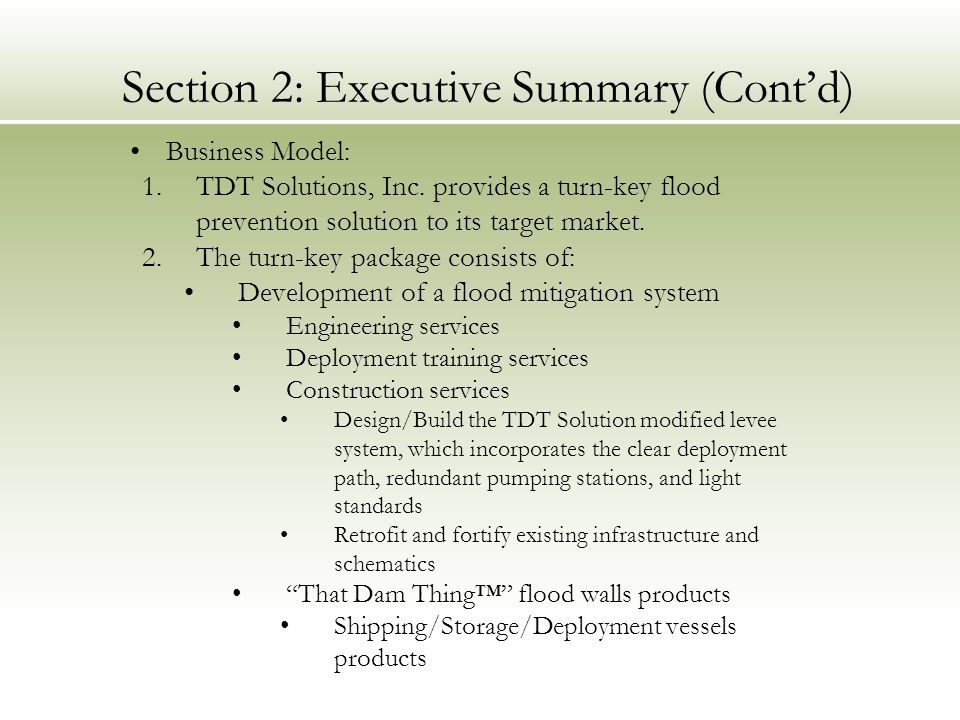 Section 2: Executive Summary (Cont'd)
