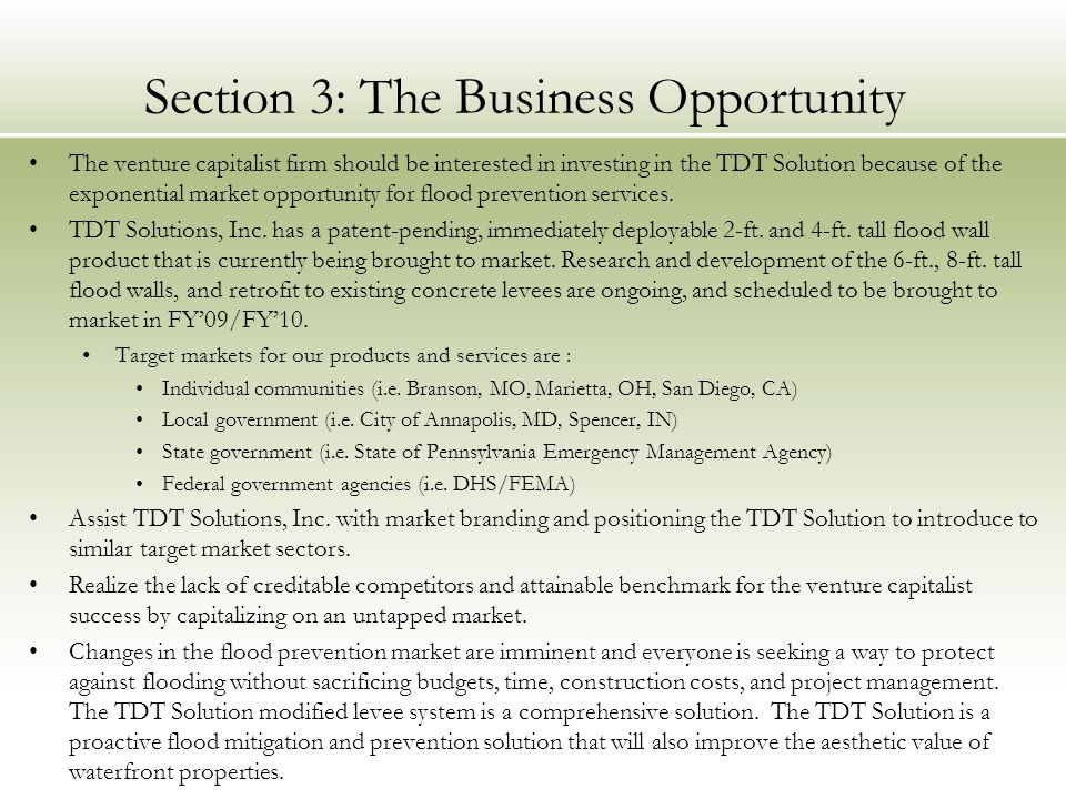 Section 3: The Business Opportunity
