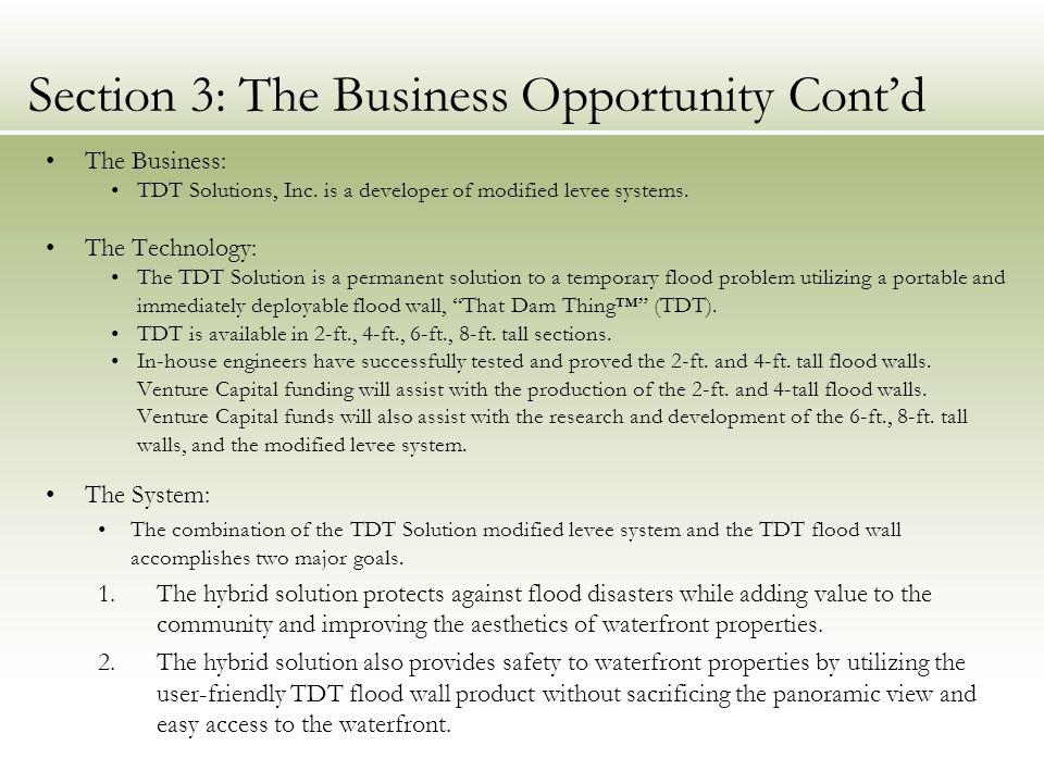 Section 3: The Business Opportunity Cont'd