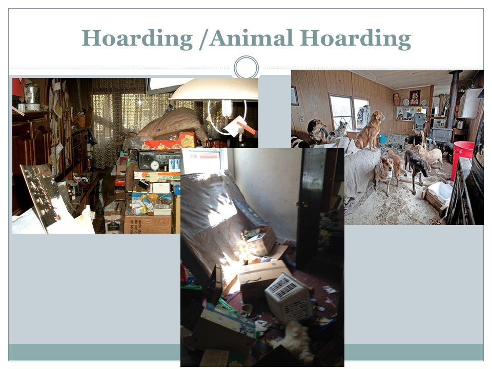 Hoarding /Animal Hoarding