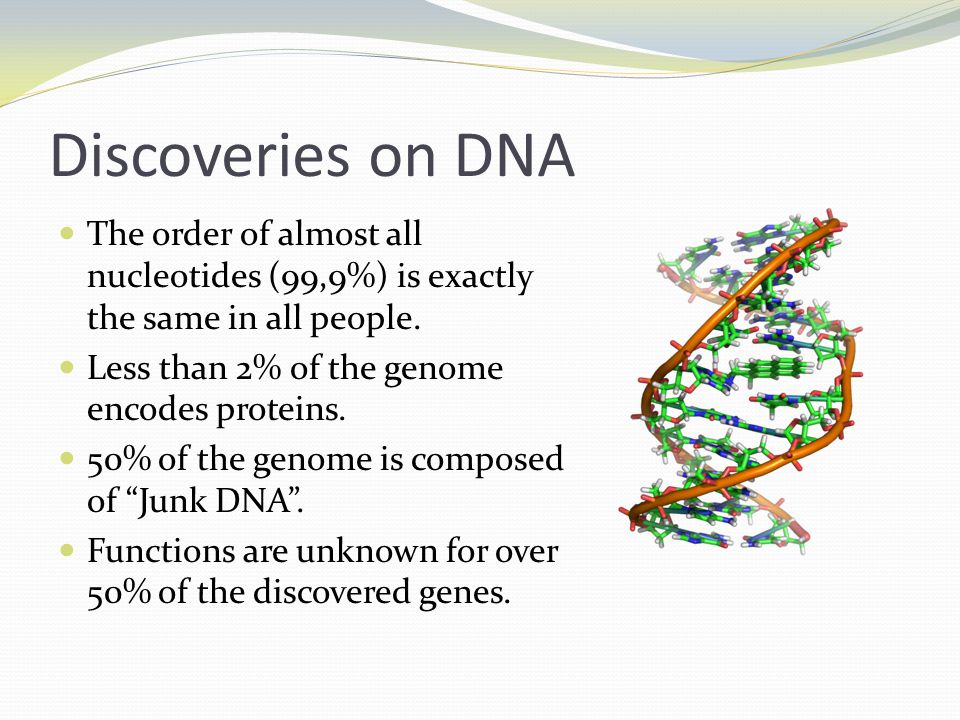 Discoveries on DNA The order of almost all nucleotides (99,9%) is exactly the same in all people. Less than 2% of the genome encodes proteins.