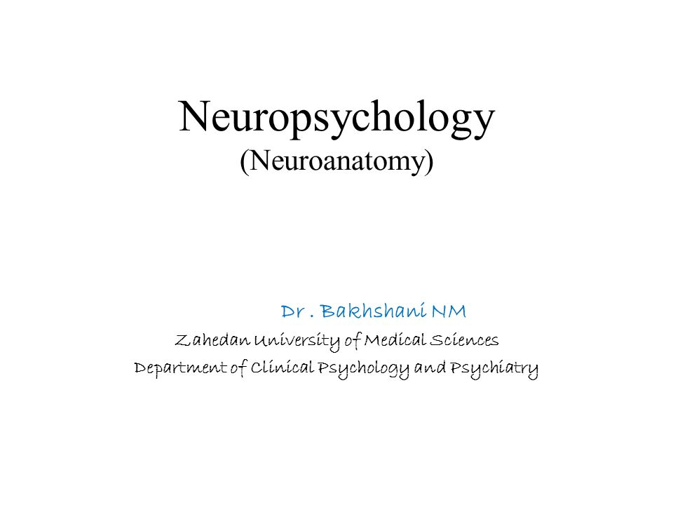 Neuropsychology (Neuroanatomy)