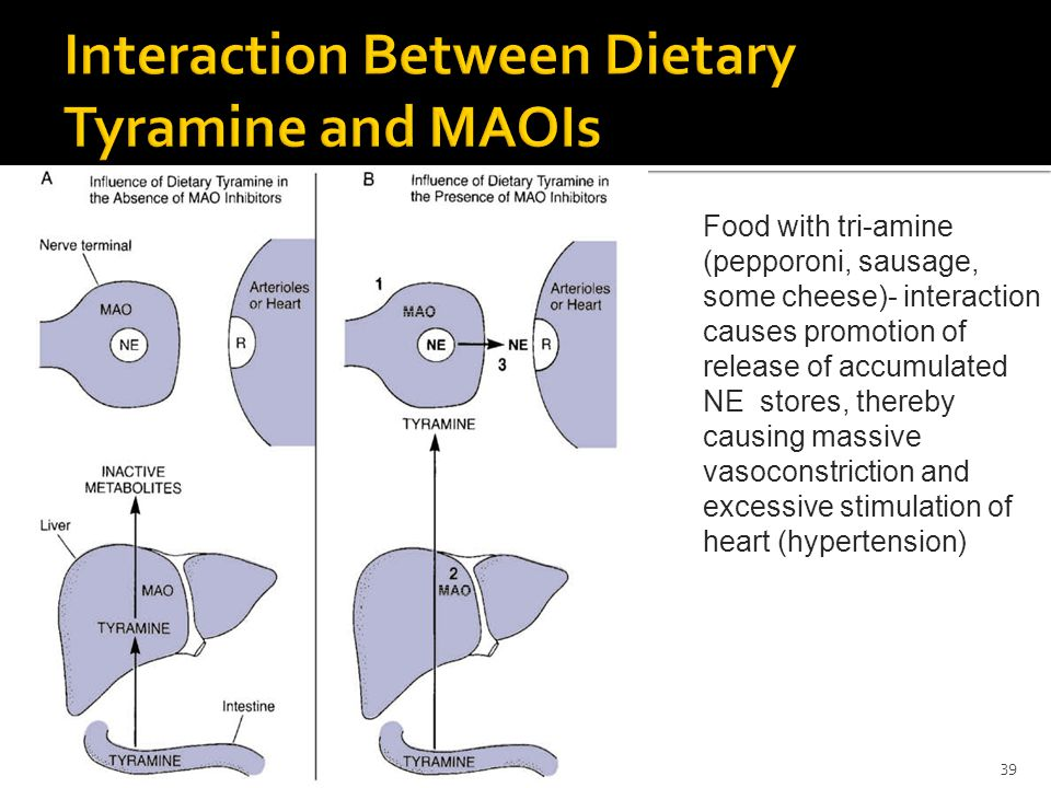 Interaction Between Dietary Tyramine and MAOIs