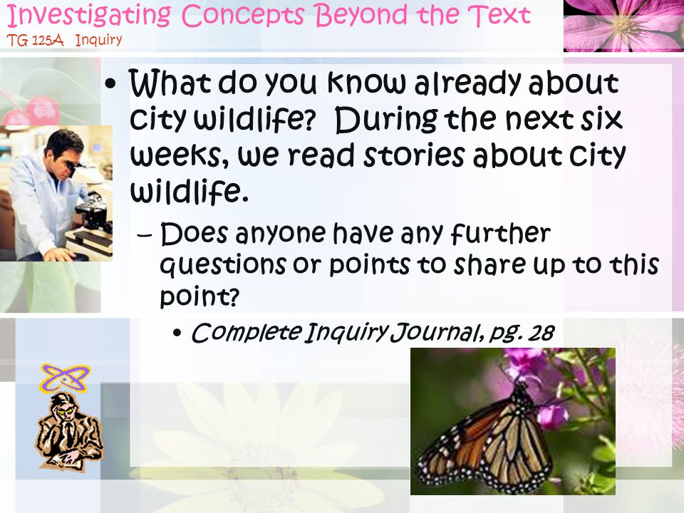 Investigating Concepts Beyond the Text TG 125A Inquiry